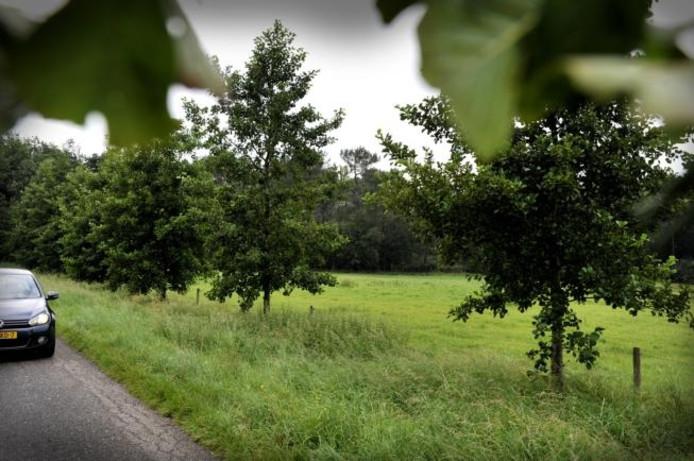 Het gebied waar de landhuizen moeten komen, is nu nog in gebruik als grasland. In de inzet een overzicht van de toekomstige situatie, met rechtsonder de bestaande Vijverhoeve met nieuwe parkeerplaats, links bovenin de nieuw te bouwen landhuizen. foto Thom van Amsterdam