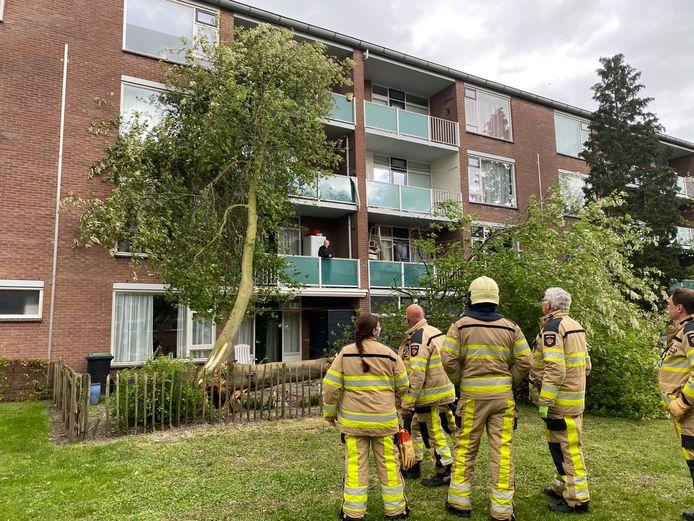 Een omgevalen boom ligt tegen de flat in Deventer.