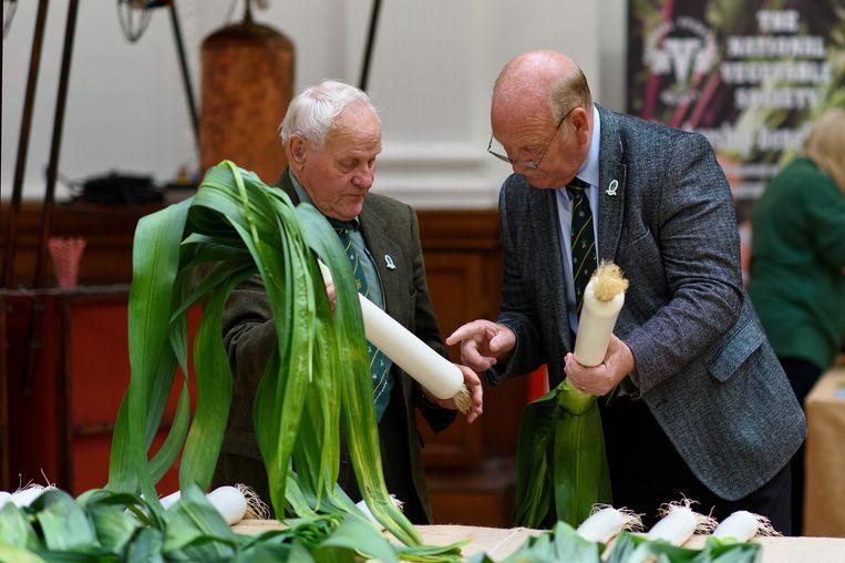 Juryleden van de Harvest Festival Show in Londen inspecteren royaal geproportioneerde preien. Beeld Getty