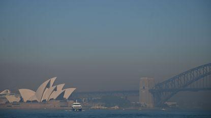 Sydney ontwaakt onder deken van rook, meer dan 50 bosbranden in New South Wales
