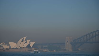 Sydney gehuld in giftige rooknevel, brandweer zet zich schrap