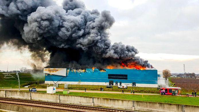 Brand op champignonkwekerij in Kesteren