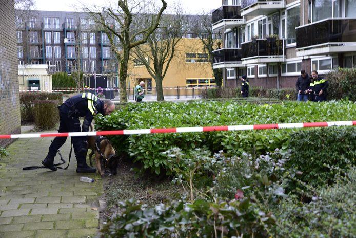 Na de steekpartij werd in de omgeving van de school met een speurhond naar het mes gezocht.