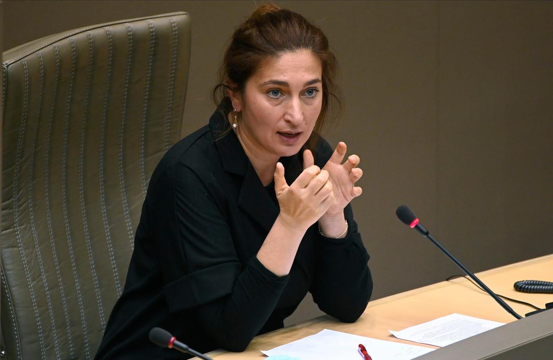 Vlaams minister van Klimaat Zuhal Demir (N-VA). Zij had 'Vlaamse' kritiek op de federale deal met Europa, maar dat was 'voortvarend'. Beeld Photo News