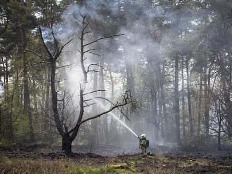 Grote brand in natuurgebied bij Beuningen onder controle