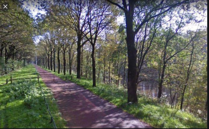 Het fietspad langs het Wilhelminakanaal in Oirschot richting Best, waar de schennispleger meerdere malen zijn geslachtsdeel liet zien aan vrouwelijke wandelaars.