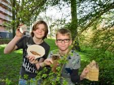 Ruben (13) en Nils (12) weten alles van fossielen: 'Als ze aangaan, gaan ze echt aan'