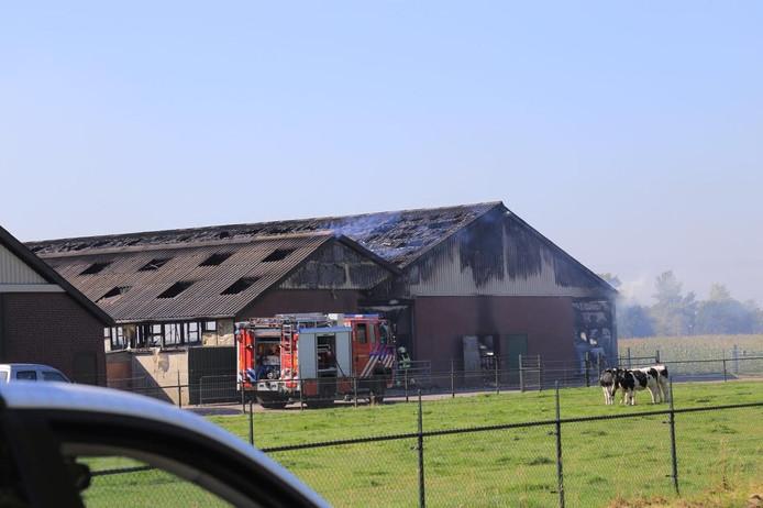 Er is brand uitgebroken in de stal aan de Landbouwstraat in Someren