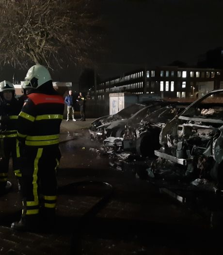 Tesla's en busje uitgebrand in Oisterwijk, twee jongemannen met jerrycans gezien