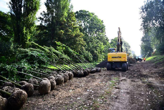 In het Hoefijzer, de groene zone rondom Rozenburg, worden deze week nieuwe bomen geplant.