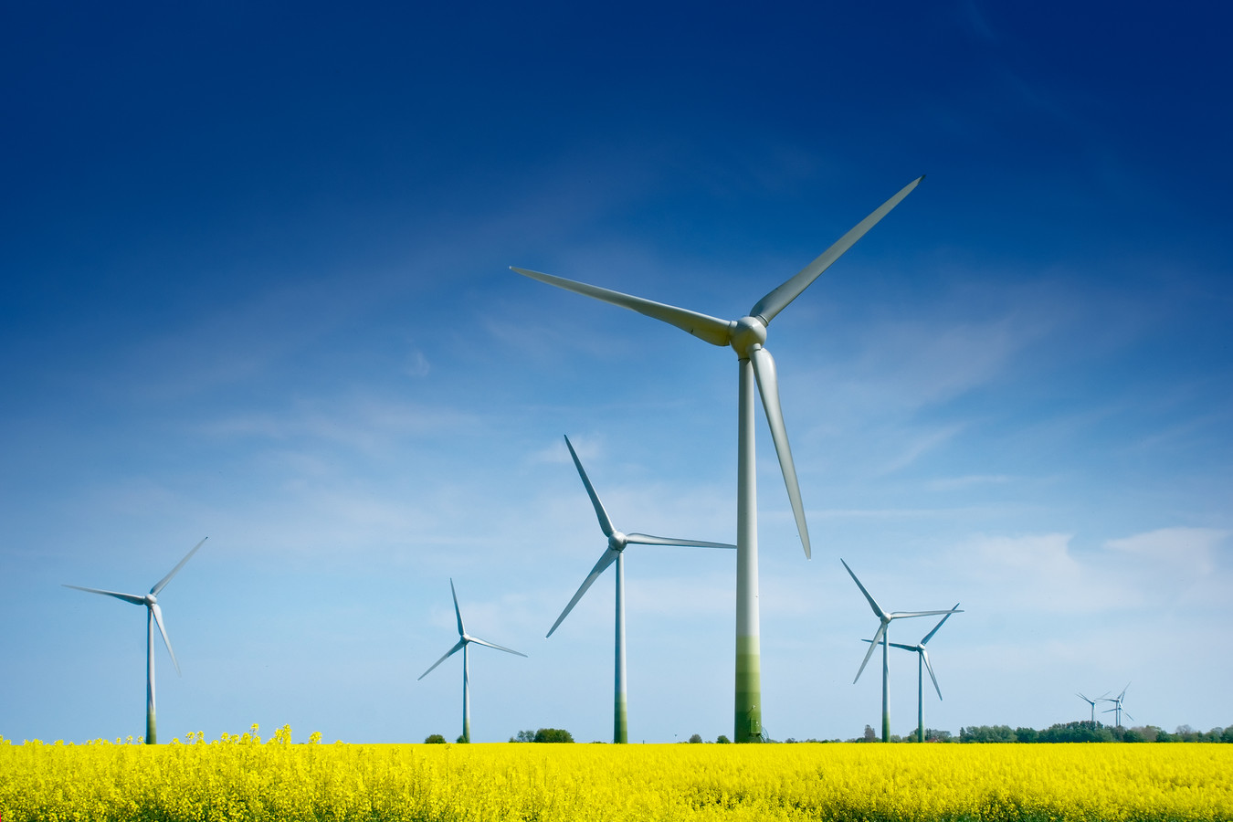 Waar en wanneer komen er windturbines in en rond Baarle-Nassau?