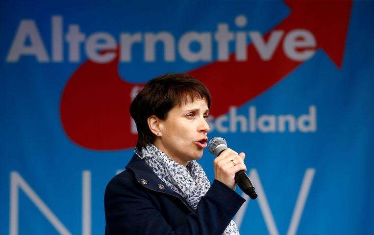 Frauke Petry. Beeld REUTERS
