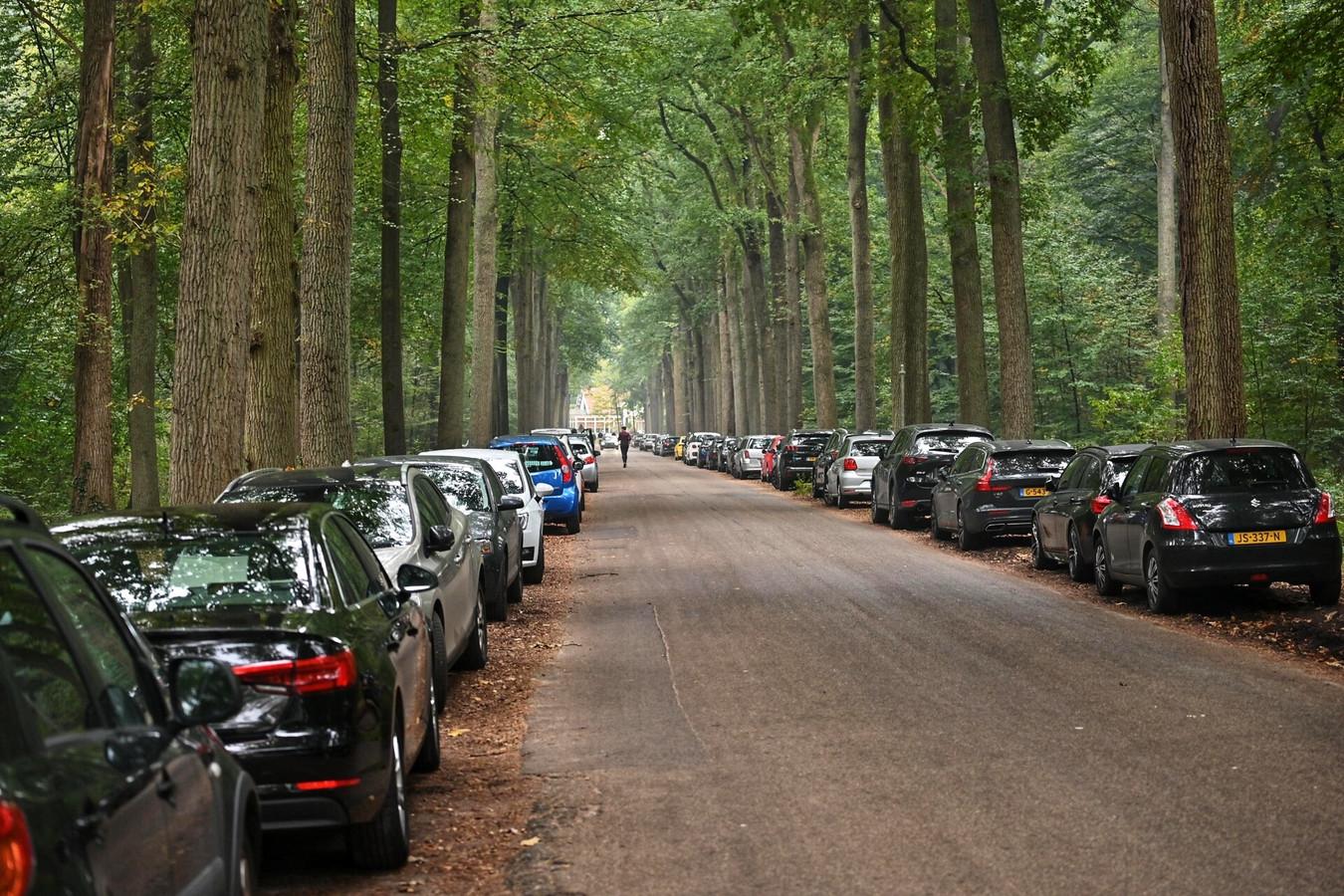 De parkeerplaatsen van de bossen rond Breda staan vol.