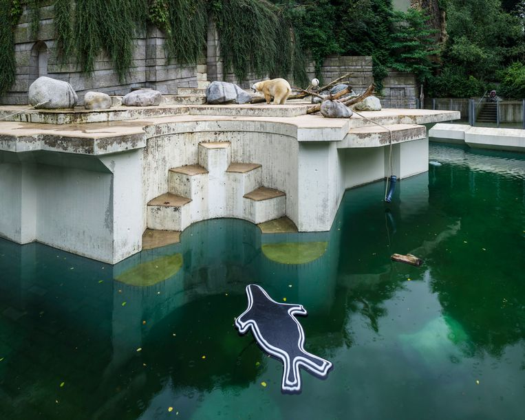 Wuppertal Zoo, Duitsland. Beeld Sheng-Wen Lo
