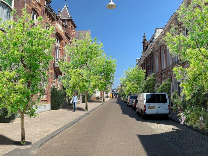 Is dit hoe de Stationstraat er over een paar jaar uitziet? In 45 straten binnen de cityring worden 56 bomen geplant. Daarnaast komen er groenzuilen en tuingeveltjes.