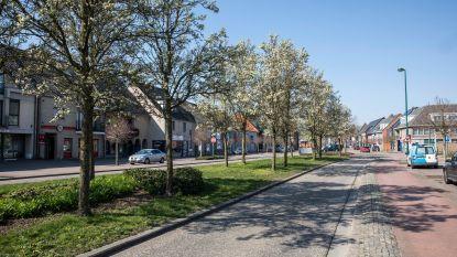 Unizo en gemeente Oudsbergen lanceren ondernemersplatform