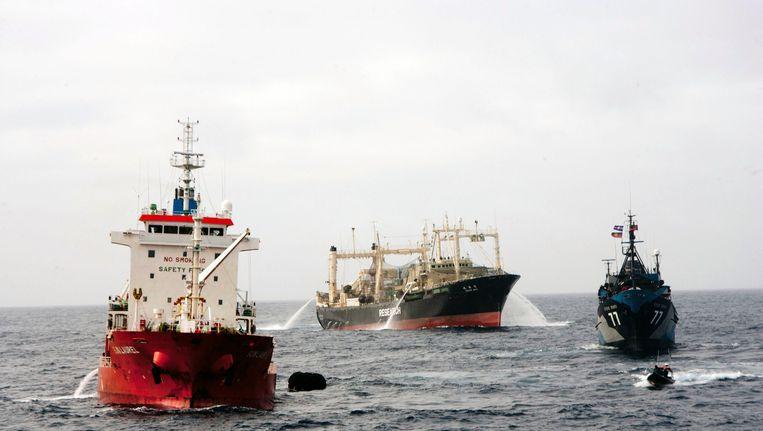 Milieuorganisatie Sea Shepherd in actie Beeld REUTERS