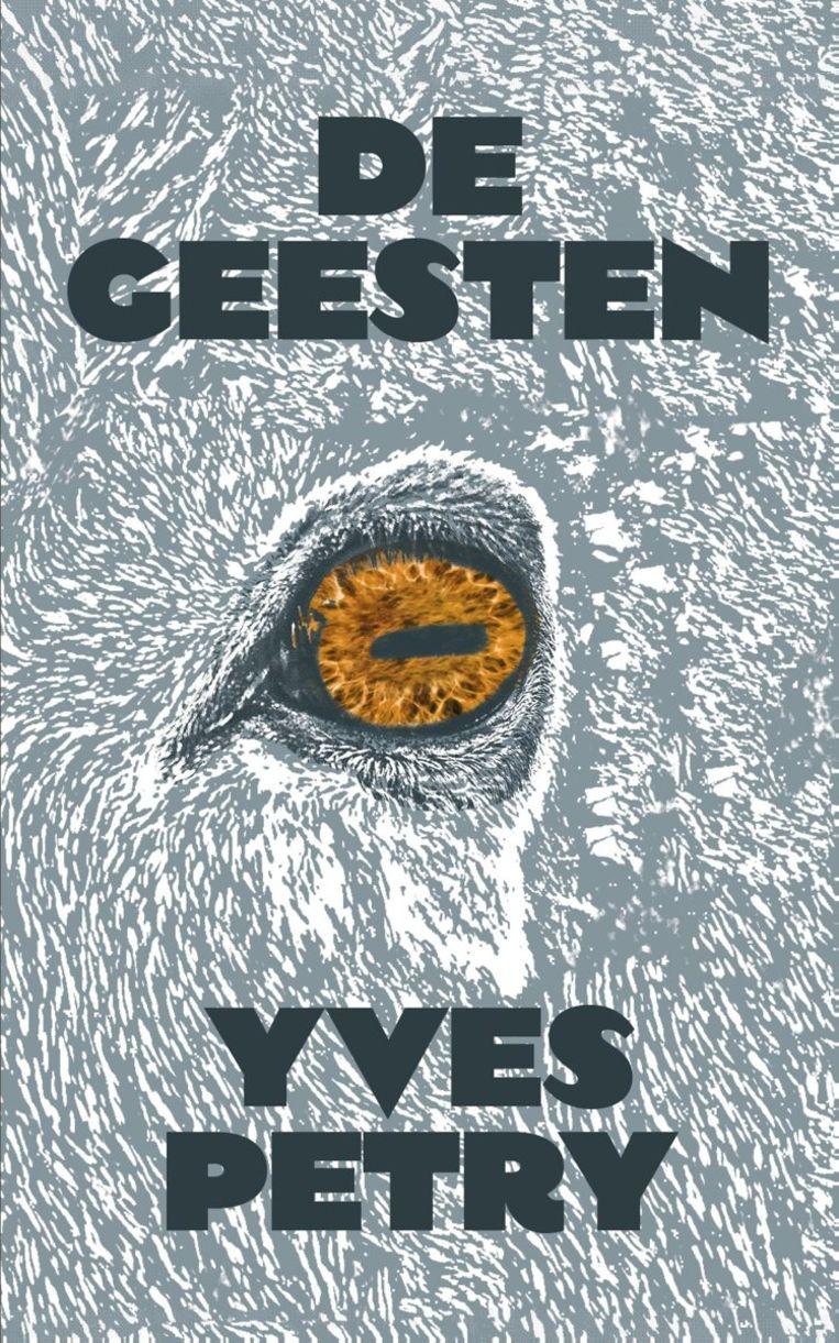 Yves Petry, 'De geesten', Das Mag, 304 p., 24,99 euro. Beeld rv