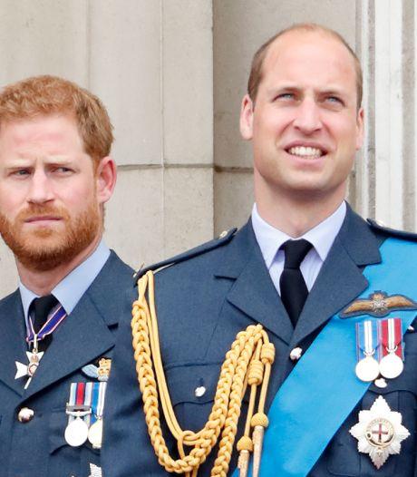 Bientôt une nouvelle occasion pour William et Harry de se réconcilier?