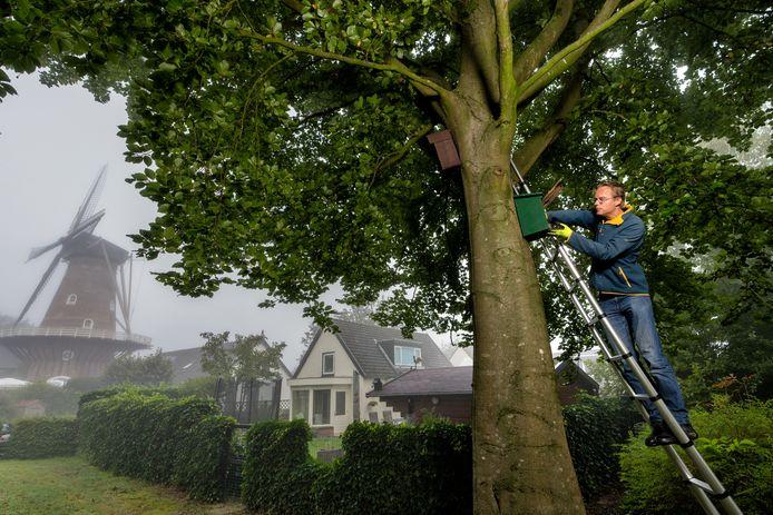 Jaap Terpstra controleert een nestkastje bij de Emmamolen in Nieuwkuijk.