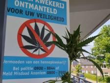Hennepkwerij met ruim 600 planten ontmanteld in Hengelo