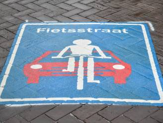 Deel Sint-Jobsstraat door werken afgesloten tot het najaar en wordt omgevormd tot fietsstraat