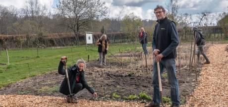 Wim en Els brachten de verwaarloosde boomgaard en kwekerij van Paleis Soestdijk weer tot leven