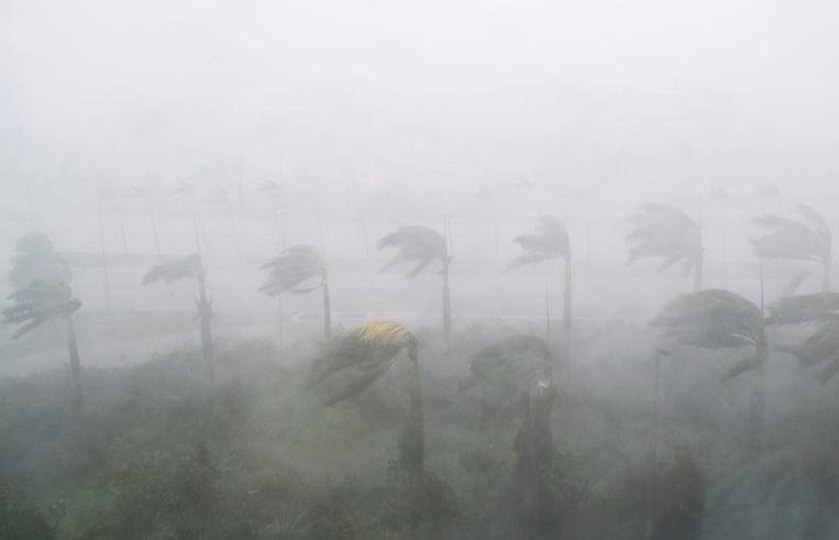 Hevige regen en wind ten gevolge van orkaan Irma in Miami, Florida.  Beeld AFP