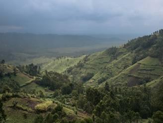 Hoe satellieten de ontbossing in Afrika remmen