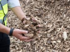 D66: 'Biomassacentrale Smits in Rijen is illegaal'
