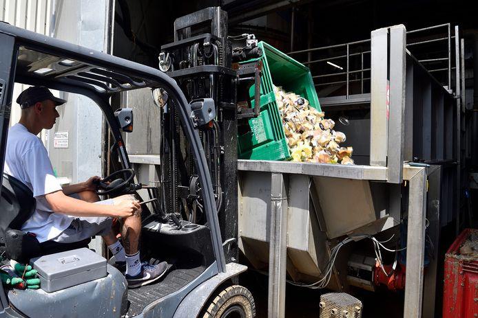 In de centrale van Van de Groep wordt vis- en ander organisch afval verwerkt tot biogas.
