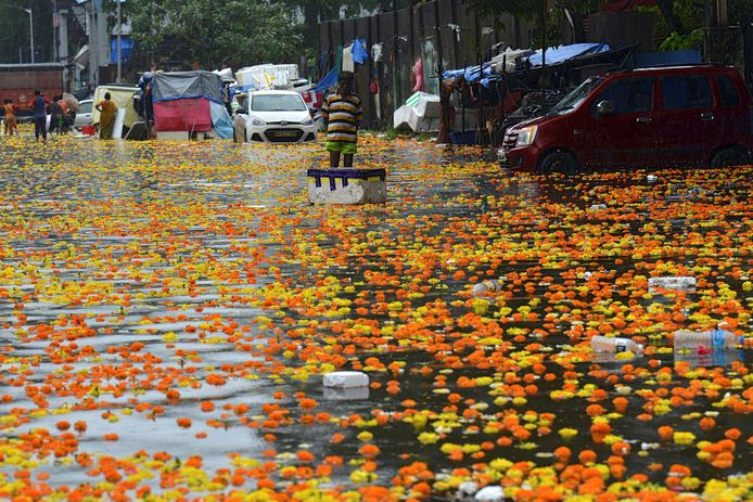 Een man staat in een door zware moessonregens ondergelopen bloemenmarkt in Mumbai, in september vorig jaar.