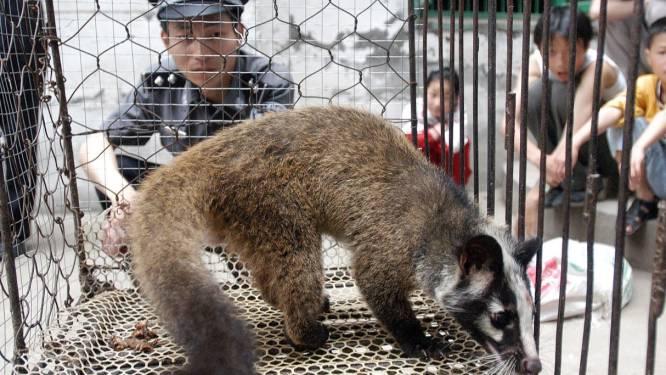 """WHO vraagt verbod van verkoop van levende dieren: """"Ze zijn bron van meer dan 70 procent van opkomende infectieziekten"""""""