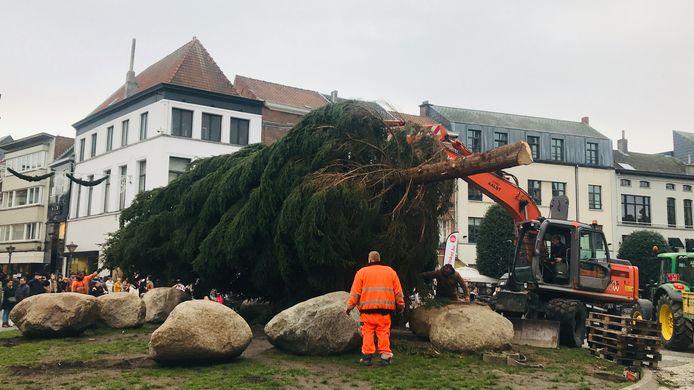 De kerstboom van Aalst komt toe op de Grote Markt.