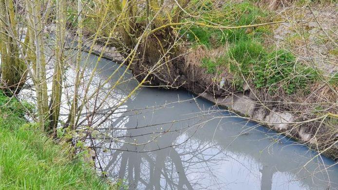 Het Sparkenvaardeken in Diksmuide, dat uitmondt in de IJzer, is ernstig vervuild. De beek kleurt volledig wit.