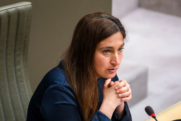 (Themabeeld) - Vlaams minister van Natuur Zuhal Demir (N-VA) gaat in overleg met Natuurpunt over de plannen voor De Maten.