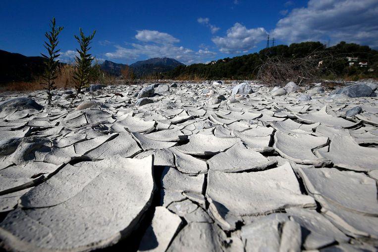 Ook in het zuiden van Frankrijk eist de droogte dit jaar haar tol.