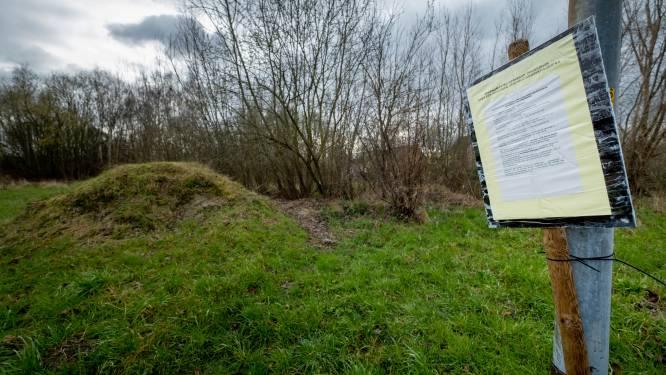 14 bezwaarschriften tegen 'recreatief project' Europa - Buurt vreest overlast, politiek wil bomenkap vermijden