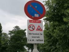 Het wemelt in deze Brabantse buurt van de ratten: 'Vissenkoppen en pannen spaghetti liggen op straat'