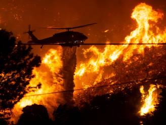 Californische brand aangestoken om moord te verdoezelen