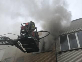 Blaffende hond waarschuwt voor brand: 3 volwassenen en kind afgevoerd naar ziekenhuis na uitslaande brand in Van Heystveltstraat