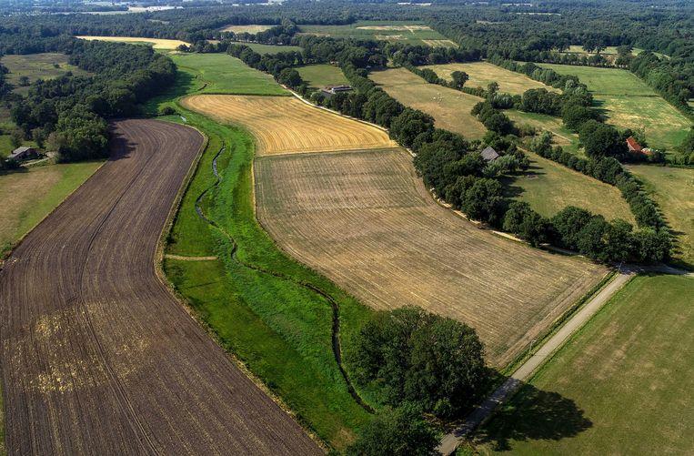 De normaal door het landschap meanderende Hagmolenbeek is door de extreme droogte veranderd in een smalle sloot.  Beeld ANP