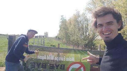 """ByeByeGrass wil grootste bloemenweide van de Benelux creëren: """"Als iedereen één vierkante meter gazon laat verwilderen, zouden we in ons opzet geslaagd zijn"""""""