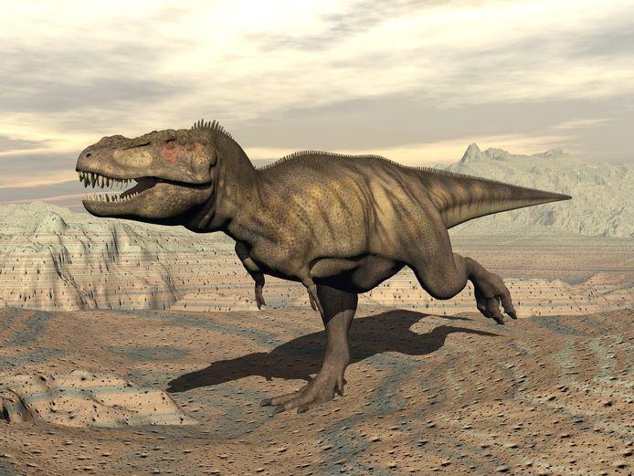 tyrannosaurus (ter illustratie)