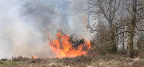 Denekamper die tbs kreeg na aansteken natuurbranden wil 'heel erg graag naar huis'