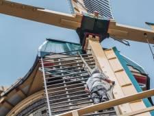 Hoogbouw bedreigt Delftse molen De Roos