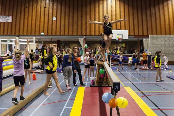 Het Grote Gymfeest in 't Cromwiel, gehouden door dans- en turnvereniging Trafo in 2014