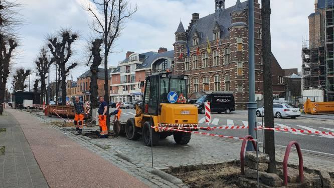 """Betonhoofdstad van Vlaanderen haalt honderden kasseien op de Vrijheid weg: """"Meer water in de grond en gezondere lucht"""""""