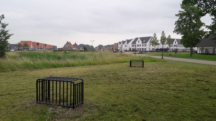 Het trapveldje met goaltjes aan het begin van de straat Watermunt in de Terneuzense wijk Othene waarover bewoners klaagden bij D66-raadslid Peter de Kraker.