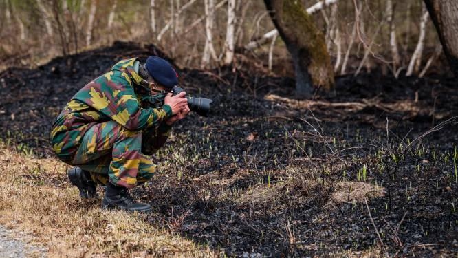 """Natuurbrand in Brecht wellicht veroorzaakt door brandbare fosforkogels: """"Onbegrijpelijk hoe zo'n fout kan gebeuren"""""""
